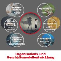Kernkompetenzen für die Organisationsentwicklung